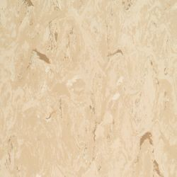 Vinyl Bahnware DLW Armstrong - Royal PUR - 424-045 soft beige