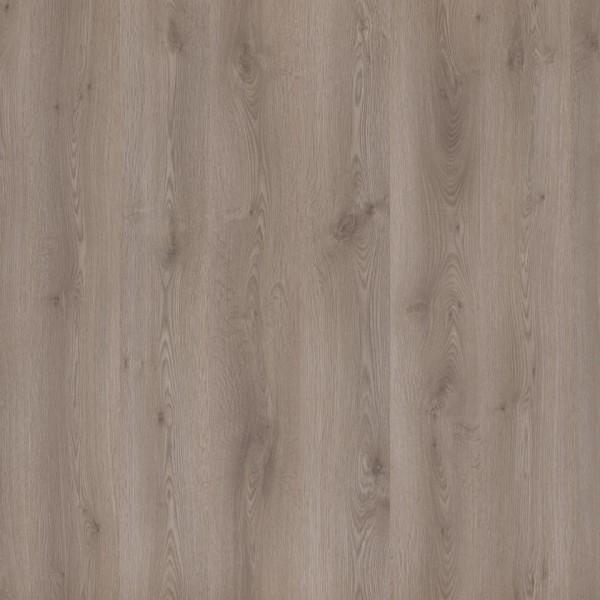 Tarkett Laminat Essentials 832 Eiche grau 42060337 1-Stab