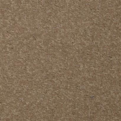 Teppichboden Toucan-T Astrum Bahnware - 6505