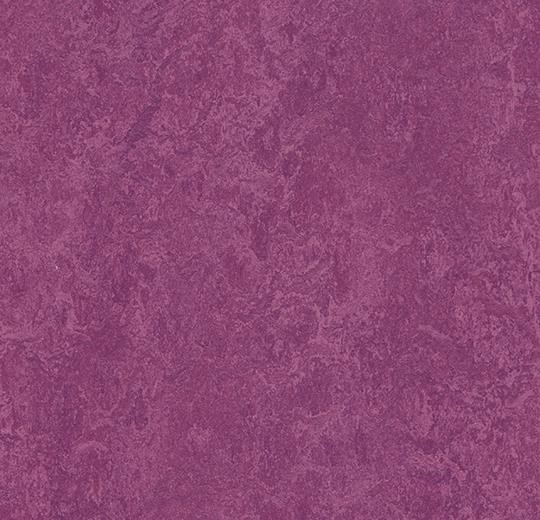 Forbo Marmoleum Modular Colour - t3245 summer pudding Linoleum Fliesen