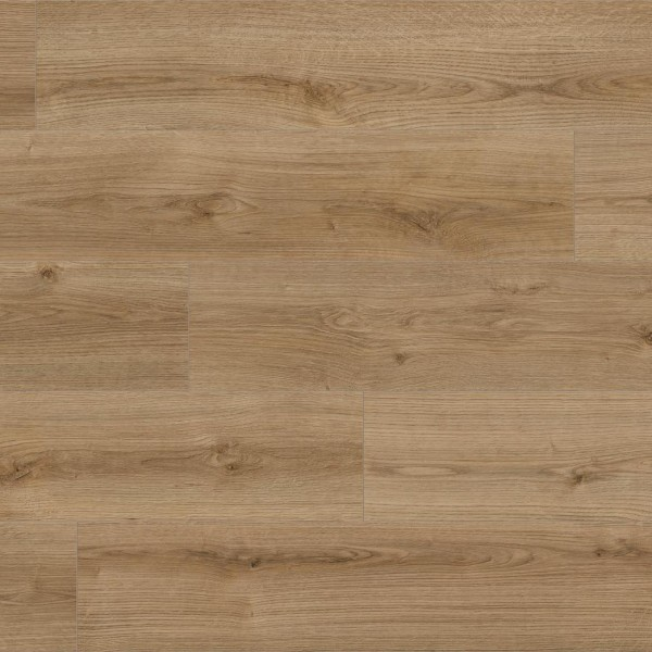 Kaindl NATURAL TOUCH 8.0 Standarddiele Eiche | Oak EVOKE TREND K4421 RI