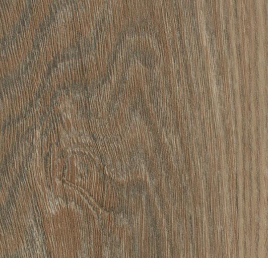 Bodenbeläge Mainz forbo vinyl allura premium wood w60187 weathered oak
