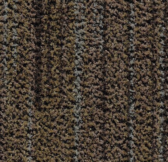 "Forbo Coral Brush ""5764 petrified grey"" - Sauberlaufzone"