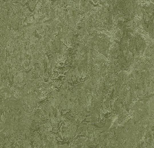 Forbo Marmoleum Modular Colour - t3255 pine forest Linoleum Fliesen