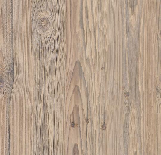 Bodenbeläge Mannheim forbo impressa ti9006 nordic pine bodenbeläge einfach