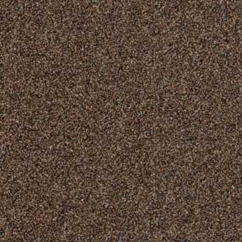 Vinylboden Forbo Eternal sand Bahnware - 13882 sepia