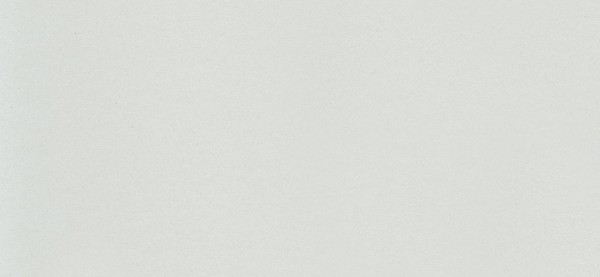 DLW Uni Walton LPX 101-059 frost grey Linoleum Bahnware 2,5 mm