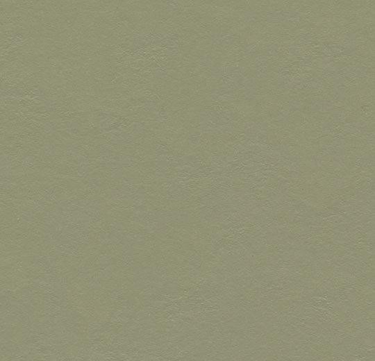 Forbo marmoleum walton - 3355 rosemary green Linoleum Uni Bahnenware 2,5 mm