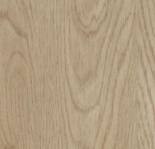 Bodenbeläge Mainz forbo vinyl allura premium wood w60064 whitewash oak