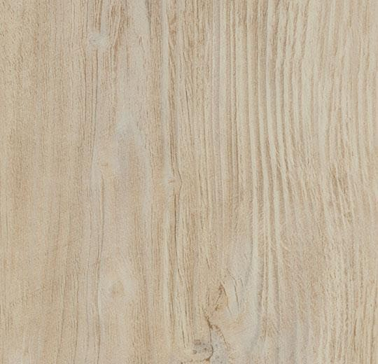 Bodenbeläge Mannheim forbo vinyl allura commercial wood w60084 bleached rustic pine